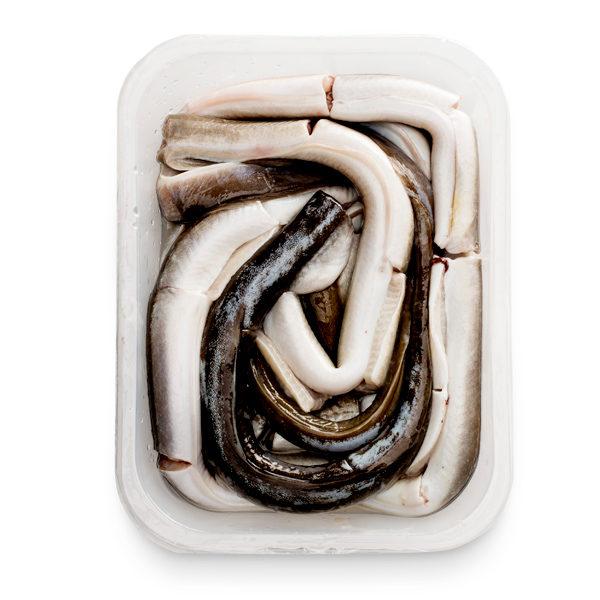 Anguila fresca eviscerada