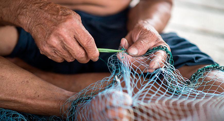 Legislación sobre la pesca de angula